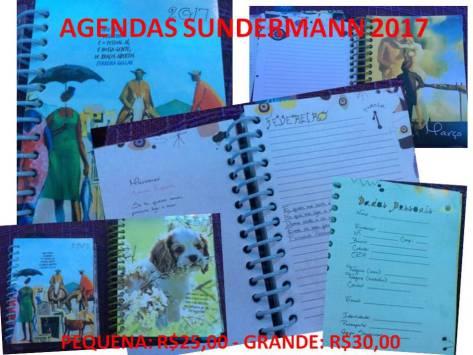 agendas-sundermann-2017
